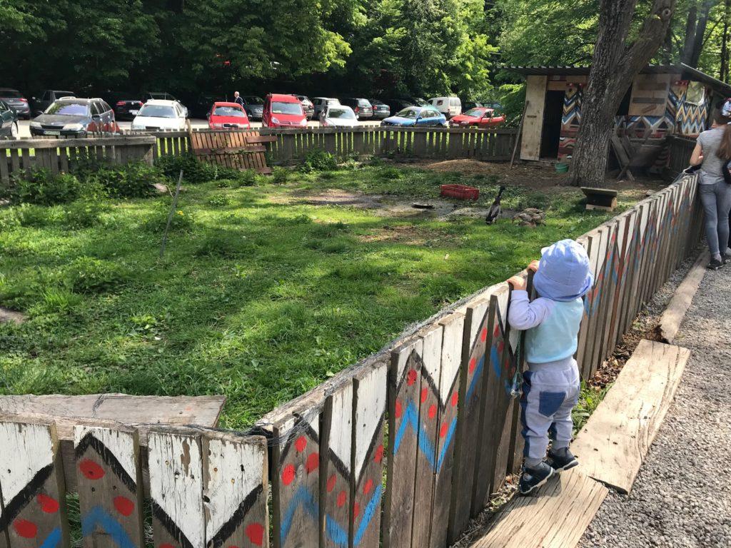 pimpi-cestovanie-bábo-bábätko-deti-košice-atrakcie-múzeá-alpinka-botanická záhrada-ZOO-kaviarne-reštaurácie-nákupy-zážitky