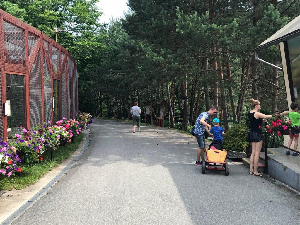 pimpi-bábo-bábätko-cestovanie-tipy-blog-zvieratká-košice-deti-kam s deťmi-baby friendly-preliezky-zábava-langoš-toalety-kojenie-hydina-zver-knihobúdka-zebra-ryby-náučný chodník