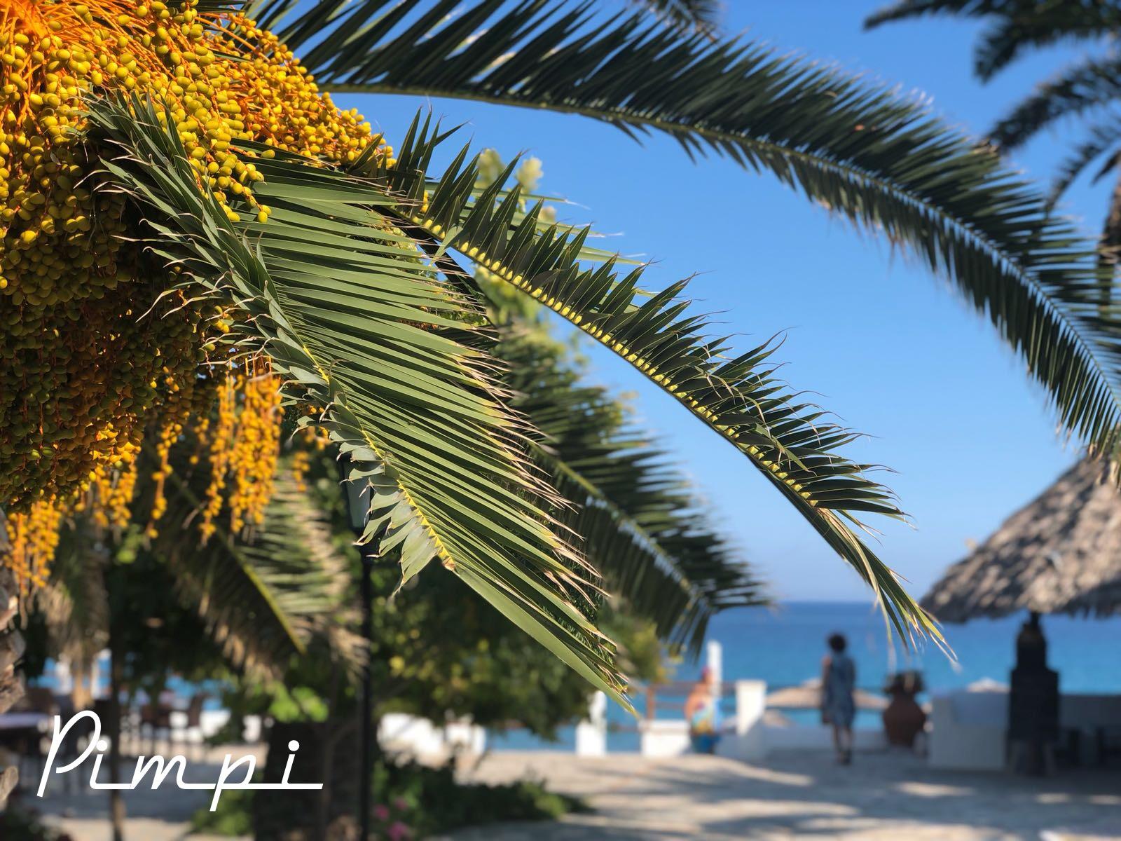 pimpi-cestovanie-bábo-bábätko-more-leto-pláž-výhody-nevýhodyy-cestovná kancelária-cestovná agentúra-vlastná päsť-cestueme sami
